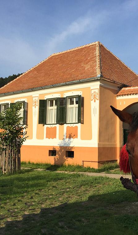 Ochra house copsamare